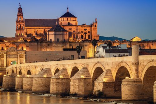 Car rental with driver in Cordoba photo city 85